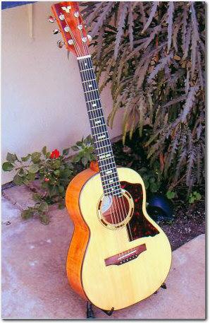 6 string tenor